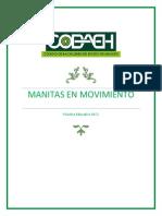 Manitas en Movimiento