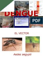 Dengue Hsr Mar 2014 - Copia
