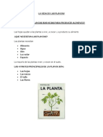LA VIDA DE LAS PLANTAS.docx