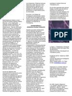 Mecanismos Empleados Por Trichoderma Especies en El Control Biológico de Enfermedades de Las Plantas