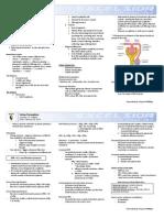 Urine Formation-SGD 3