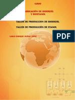 Taller%20de%20Biodisel%20yBioetanol.pdf