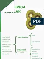 Bioquímica Celular - Aula CRB