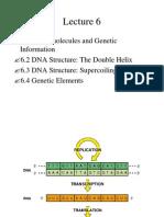 ESR - FM 6 Material Genetika