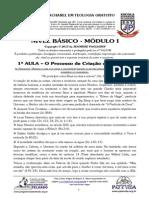 BÁSICO - Mód I - 1ª AULA - O Processo de Criação do Universo.pdf