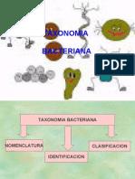 clasificacionbacteriana-110227231643-phpapp01