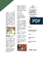TRIPTICO_DE_LABORALES (1)