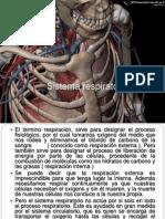 Sistema Respiratorio Daniel