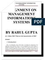 Assignment on Mannegement Information Systems