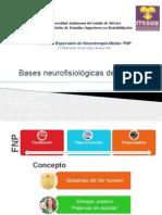 basesneurofisiolgicasyprocedimientosbsicosdefnp-121129205325-phpapp02