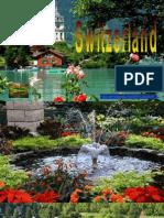 Accordéon Suisse D T
