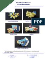 8-6 PB FBM Modelle Zur Veranschaulichung Dt