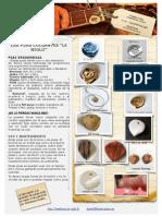 fiche notice es.pdf