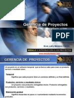 Introduccion a Gerencia de Proyectos
