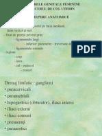 Cancerele Genitale Feminine - Cancerul de Col Uterin