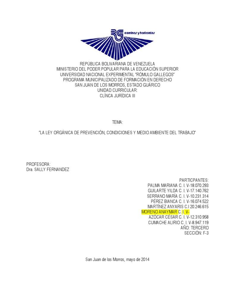 TRABAJO LOPCYMAT SALLY.docx