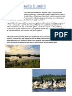 Delta Dunării.docx