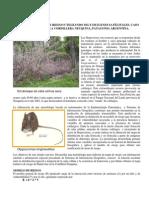 Patagonia Esp