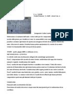 """Relazione  sul percorso """"I Semi"""" - Classe 1° primaria - a.s. 2008-09"""