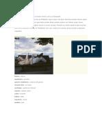 Genero-indarkeria 036.doc