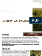 Prezentare Murfatlar Romania