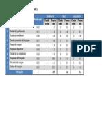 2. Matriz Del Perfil Competitivo de La UMG