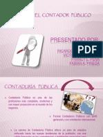 perfildelcontadorpblico-101017001715-phpapp02