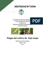 Manual de Plagas de Frijol Caupi 2013