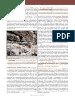 Argolo Et Al. 2012 - Oxyrhopus Formosus