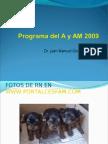 Programa Del Adulto AM 2009