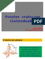 20121205104424 Inedi.funcoes.organicas[1]