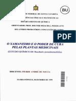 Pierre Andre de Souza
