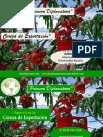 I Especialización.pptx Cereza