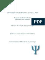 EXPERIENCIA DE APRENDIZAJE PSICOLOGIA DEL APREN..docx