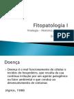 1 - Histórico e Morfologia