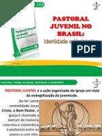 Estudos 103 Cnbb - Pastoral Juvenil No Brasil - Pe Sávio