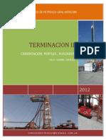 cementacion, pruebas y cañoneo.pdf
