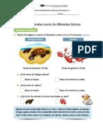Guía de Aprendizaje Ciencias Naturales 1º