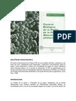 Control biológico de la polilla de la papa con Baculovirus phthorimaea
