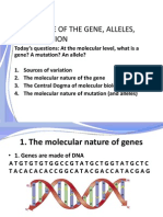 08 genes and mutation