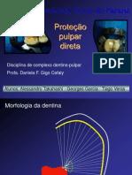 Seminário de PPD