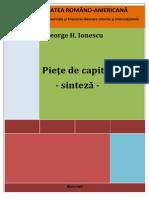 Piete de Capital - Sinteza 2013