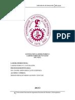 Informe de Nucleos 2 Diego Meiggs (1)