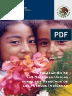 CDI Declaracion Onu Pueblos Indigenas