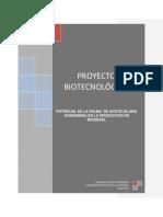 PROYECTO BIODIESEL (BIOTECNOLOGIA).docx