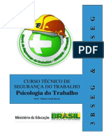 PSICOLOGIA DO TRABALHO - CTST.pdf