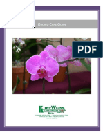 Orchid Care Guide