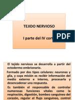 Tejido Nervioso (1)