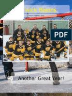Hockey Sample