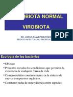 The Microbiota